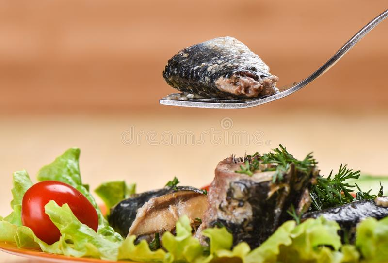 A piece of canned sardine Ivasi on a fork above a plate of sardines and vegetables stock photography
