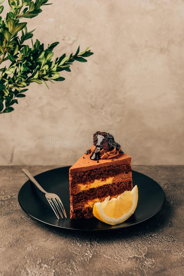 piece of delicious cake with chocolate and lemon royalty free stock image