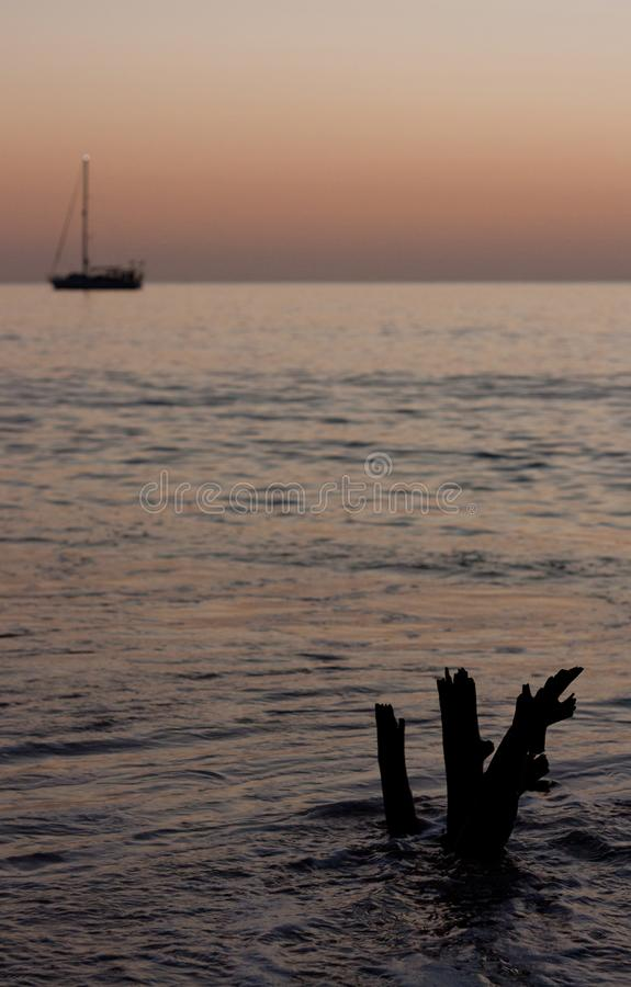 A piece of driftwood in the foreground and a boat in the background in Tonga. A piece of driftwood in the foreground and a boat in the background during sunset stock photo