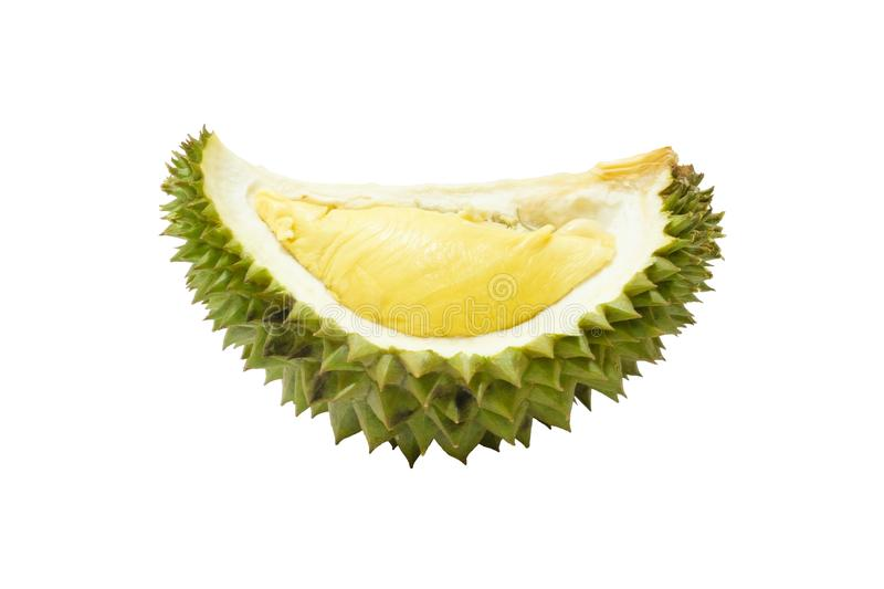 Piece of durian famous food  king of fruit  isolate on white background with clipping path. Close up a piece of durian famous food  king of fruit  isolate on stock image