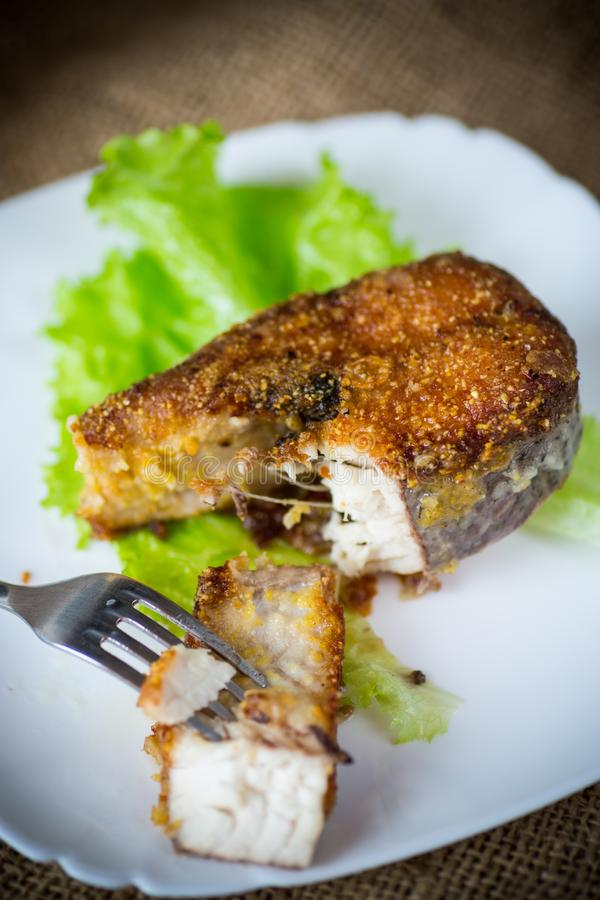 Piece of fried pike fish in a plate on a wooden royalty free stock image