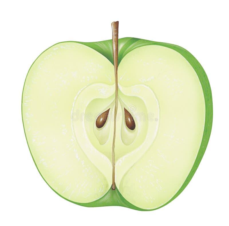 Piece of Green Apple stock illustration