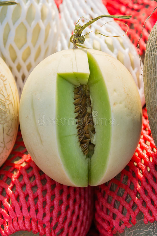 Piece of green cantaloupe cutted for test taste. 1 royalty free stock photo