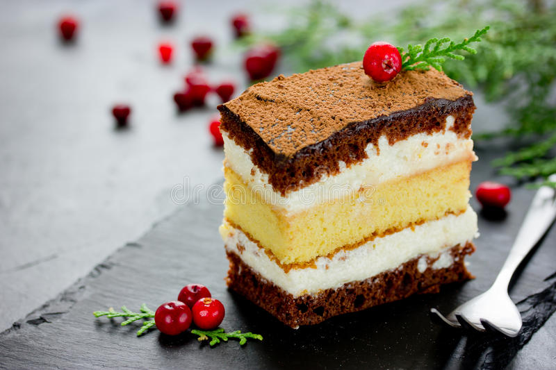 Piece of layer chocolate lemon cake decorated with cranberries f stock photo