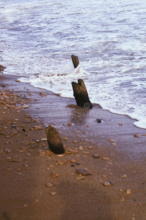 Planks of wood on a beautiful coast of the sea stock images