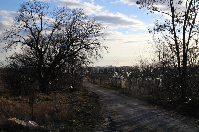 Piece of plastic on trees and fence near rubbish dump, Stupava. Slovakia royalty free stock photography