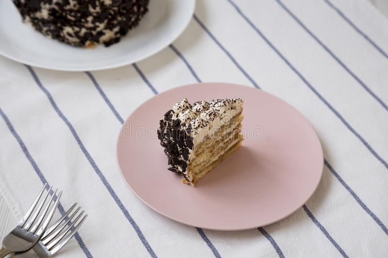 A piece of tiramisu cake on a pink plate, low angle view. Closeup.  royalty free stock images