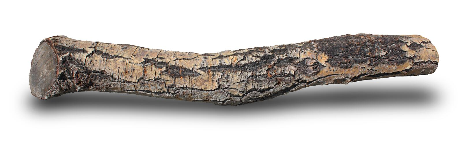 A piece of wood from nature stock photography