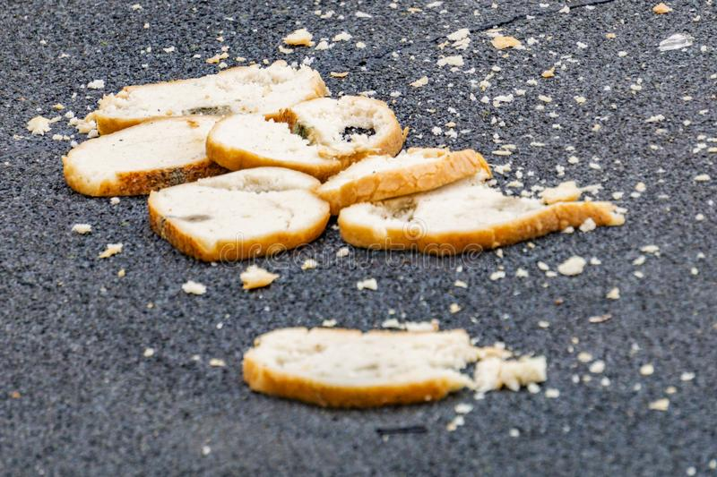 Pieces of bread lie on the road, the concept of hunger, take care of food, spoiled bread. Bread stale dry old thrown on the trash, Pieces of bread lie on the royalty free stock photo