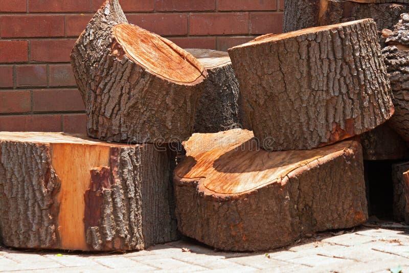 PIECES OF CUT LOG. Tree cut into pieces of log stock photos