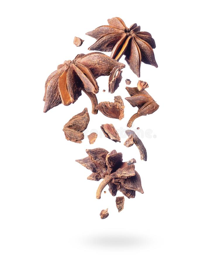 Pieces of dry anise fall down on a white background vector illustration