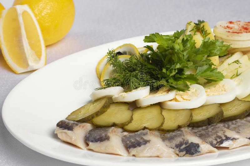 Pieces of fish, eggs, bread, cucumbers, lemon near cold snacks royalty free stock photos