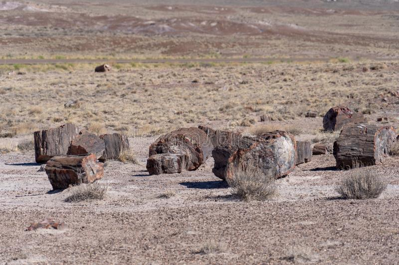 Pieces of petrified wood split that has now turned the prehistroic log into crystal stone minerals at the Petrified Forest royalty free stock image
