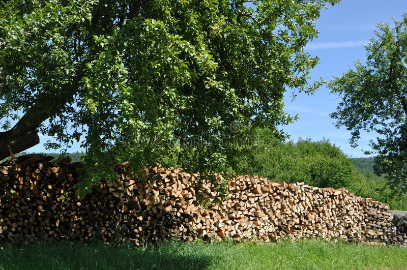 Download Pieces Of Wood In The Nature Royalty Free Stock Photo - Image: 19387345