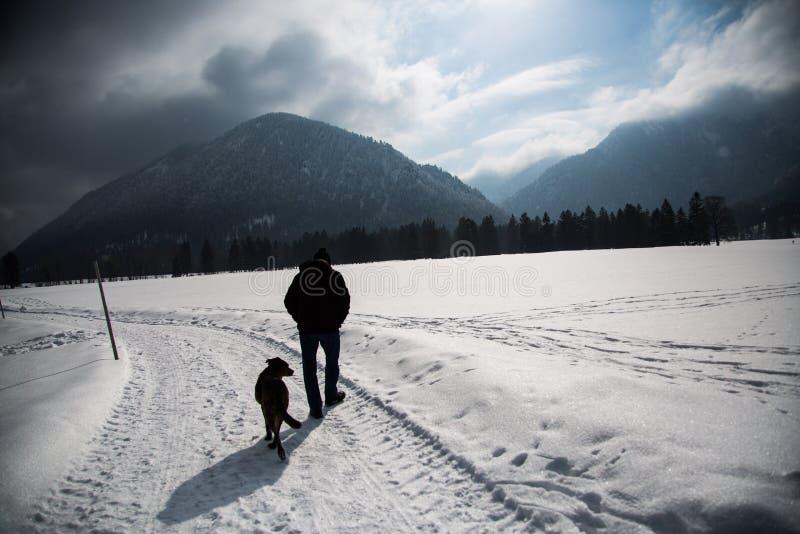 Piechur w zimie z psem zdjęcia stock