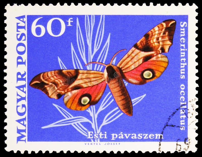 Pieczęć pocztowa wydrukowana na Węgrzech pokazuje Eyed Hawk-moth (Smerinthus ocellatus), Butterflies (1969) serie, około 1969 obrazy stock