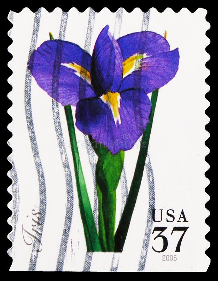 Pieczęć pocztowa wydrukowana w Stanach Zjednoczonych pokazuje Iris, Spring Flowers serie, około 2005 fotografia royalty free