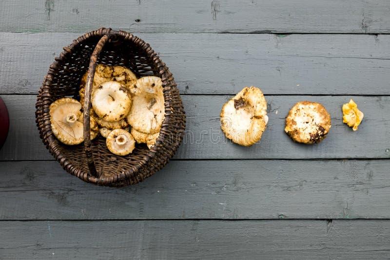 Pieczarki na drewnianym stole Jesień motyw zdjęcie royalty free