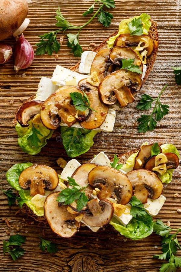 Pieczarkowa kanapka, otwarta stawiająca czoło kanapka z dodatkiem brąz pokrajać pieczarki, camembert ser, sałata i świeża pietrus obrazy royalty free