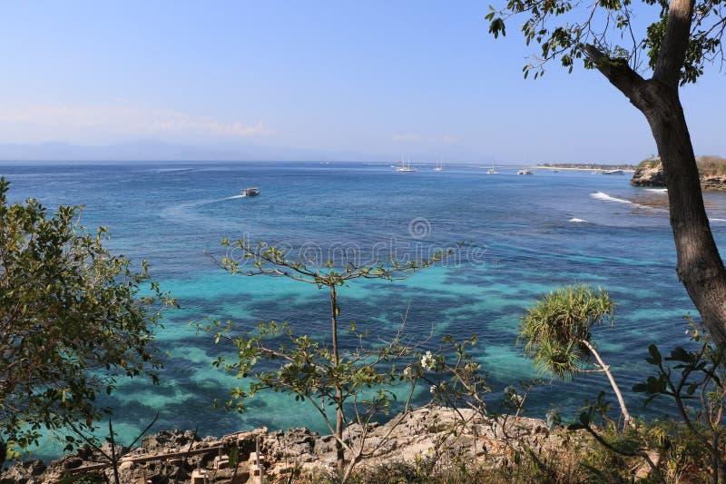 Pieczarkowa zatoka przy Nusa Lembongan plażą, Bali, Indonezja obraz royalty free