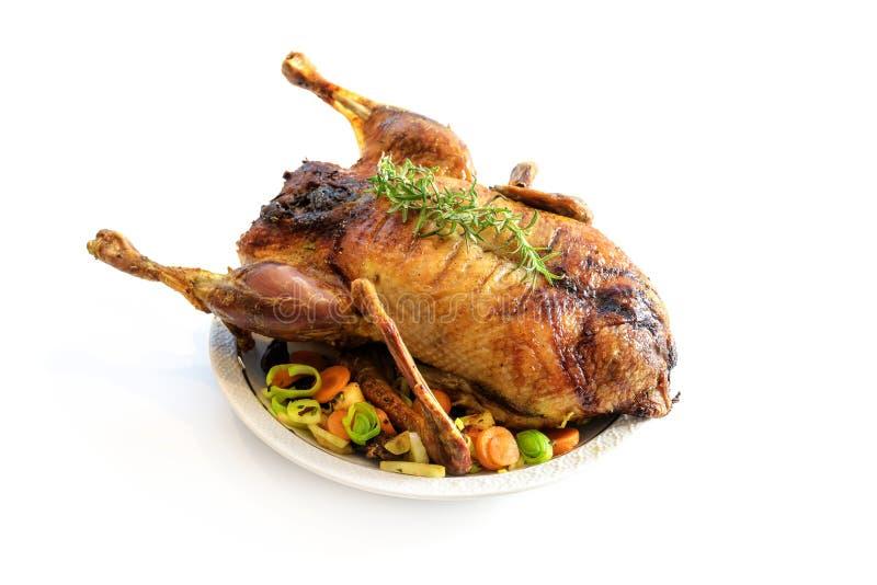 Pieczony kaczka z warzywami, świąteczny posiłek wyizolowany małym cieniem na białym tle, przestrzeń na kopię zdjęcie stock