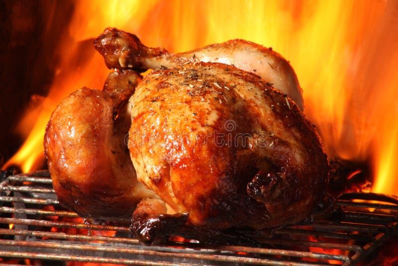Pieczony kurczak fotografia royalty free