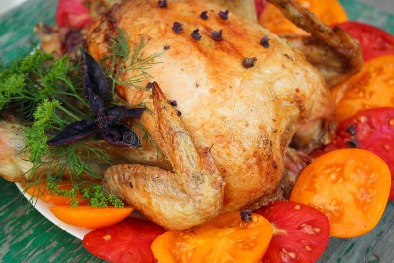 Pieczony kurczak z pomidorami na białym talerzu zdjęcie royalty free