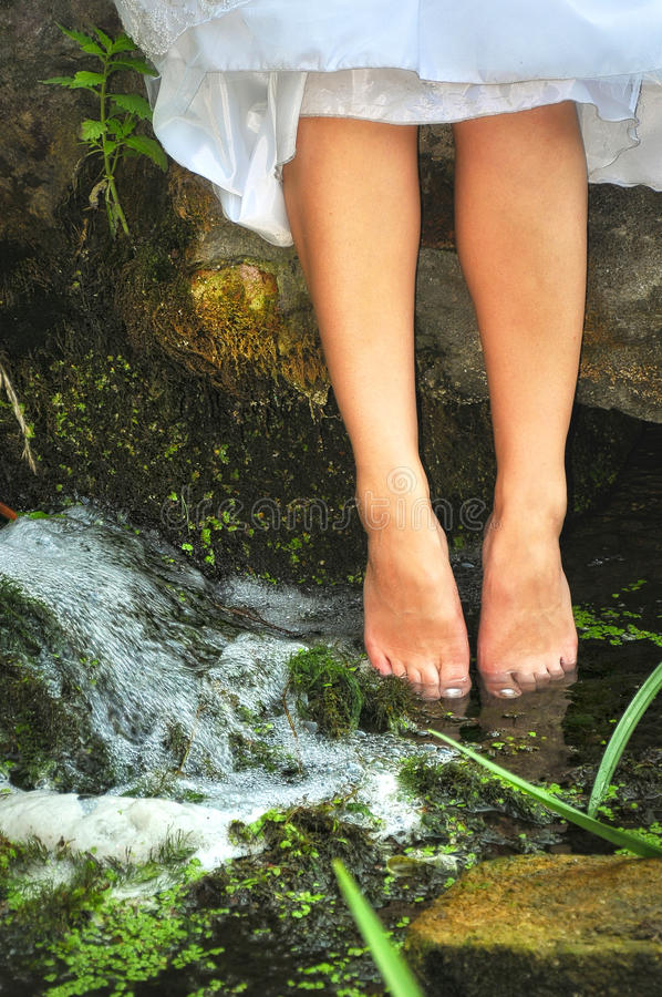 Pied dans l'eau dans le conte de la forêt .fairy photos stock