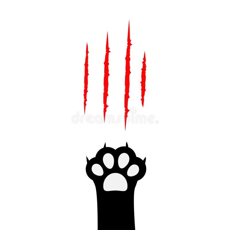 Pied de jambe d'impression de patte de chat noir Les griffes ensanglantées rayant l'éraflure rouge animale éraflent la voie Silho illustration stock