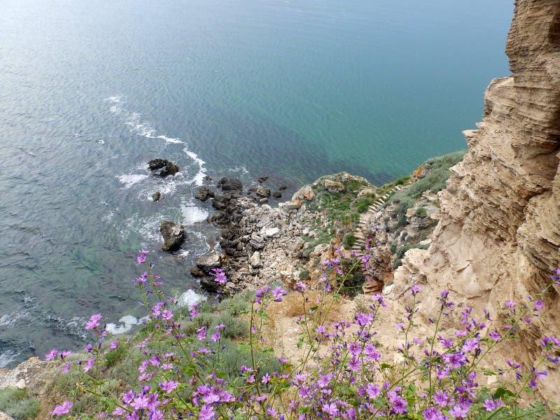 Pied et Mer Noire de falaise photographie stock libre de droits