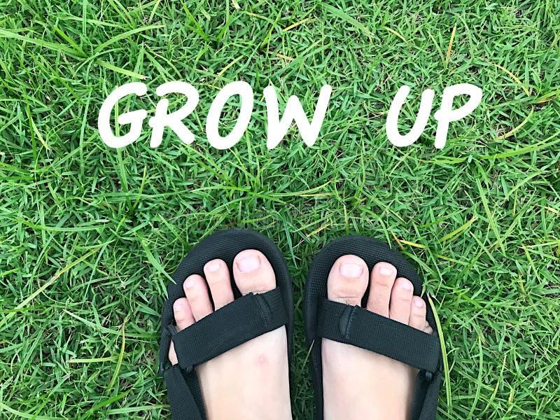 Pied sur l'herbe verte photos libres de droits