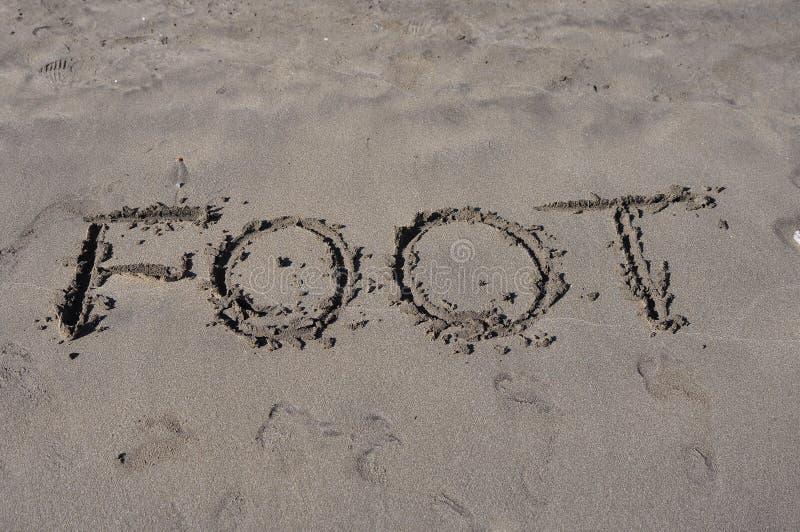 Piede sulla sabbia immagine stock libera da diritti