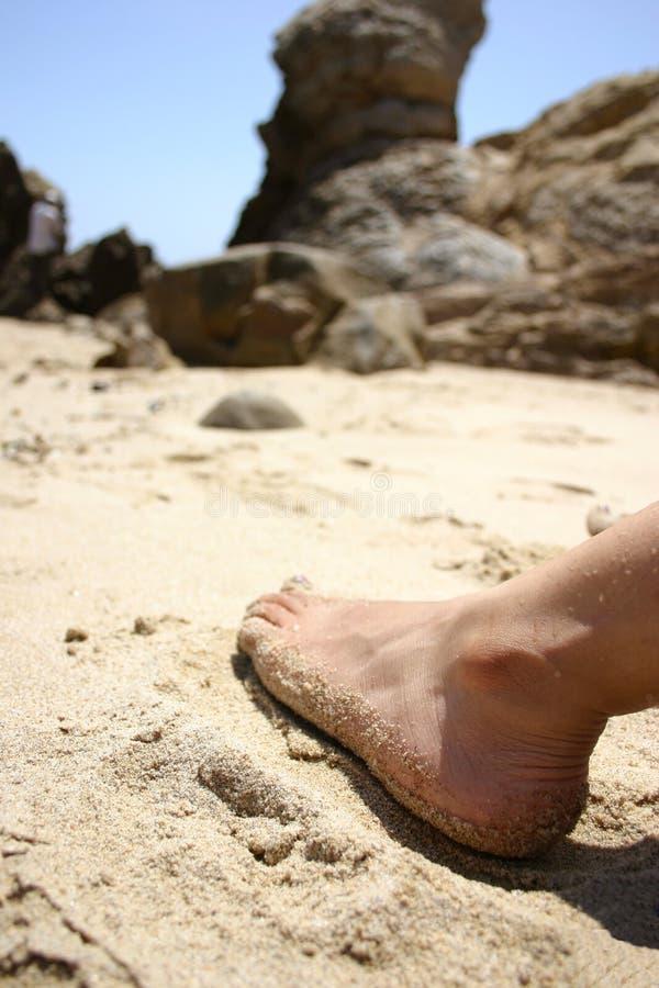 Piede sulla spiaggia immagine stock libera da diritti