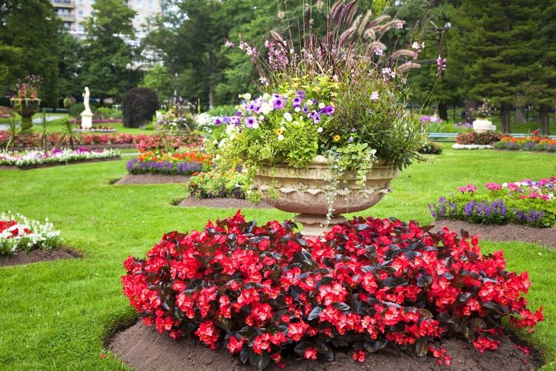 piedestałów ogrodowi plantatorzy obraz stock