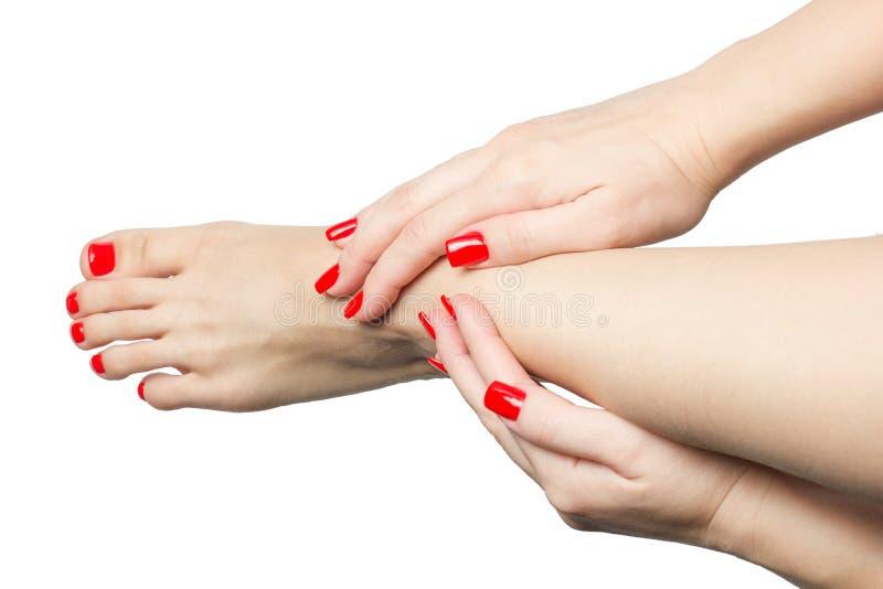Piedi e mani femminili Manicured con i chiodi rossi isolati su bianco immagine stock