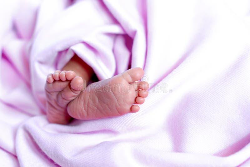 Piedi molto piccoli di un bambino appena nato gambe su un fondo rosa piedi del bambino, con lo spazio della copia fotografia stock libera da diritti