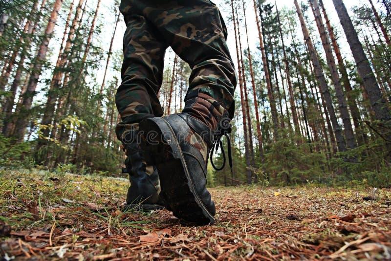 Download Piedi Nella Foresta Di Autunno Delle Scarpe Immagine Stock - Immagine di terra, aperto: 55361637