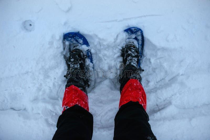 Piedi in racchette da neve su neve fotografie stock libere da diritti
