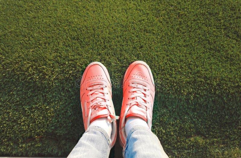 Piedi in scarpe da tennis sull'erba immagini stock