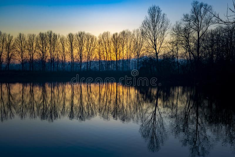 Piedmont, Italy, lakefront at sunset, in the park of the river po. Beautiful lakefront at sunset, in the park of the river po po morto with reflected trees near stock photos