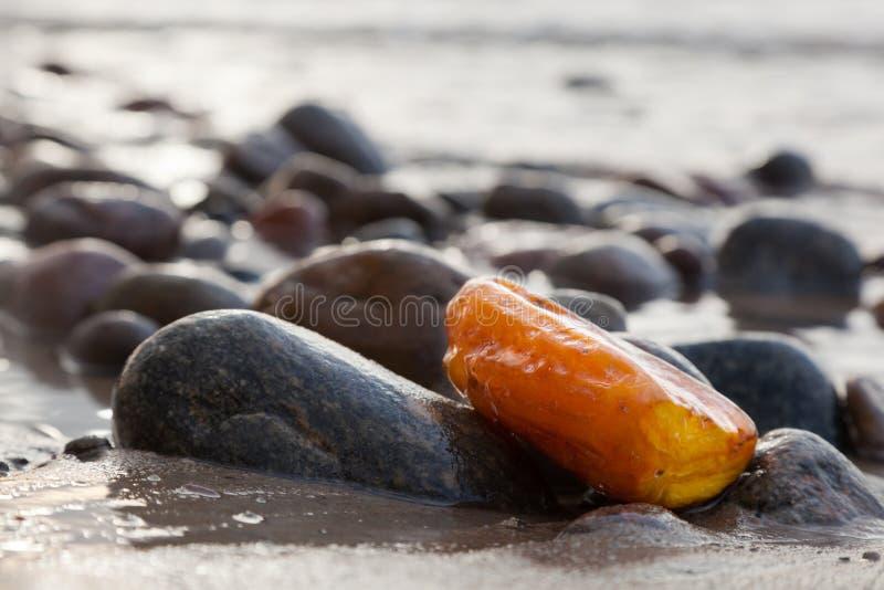 Piedra ambarina en la playa rocosa Gema preciosa, tesoro fotografía de archivo libre de regalías