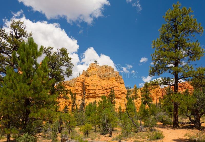 Piedra arenisca colorida en el desierto imagen de archivo