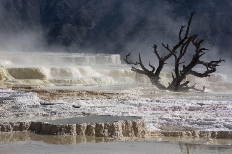 Piedra caliza en el parque nacional de Yellowstone foto de archivo libre de regalías