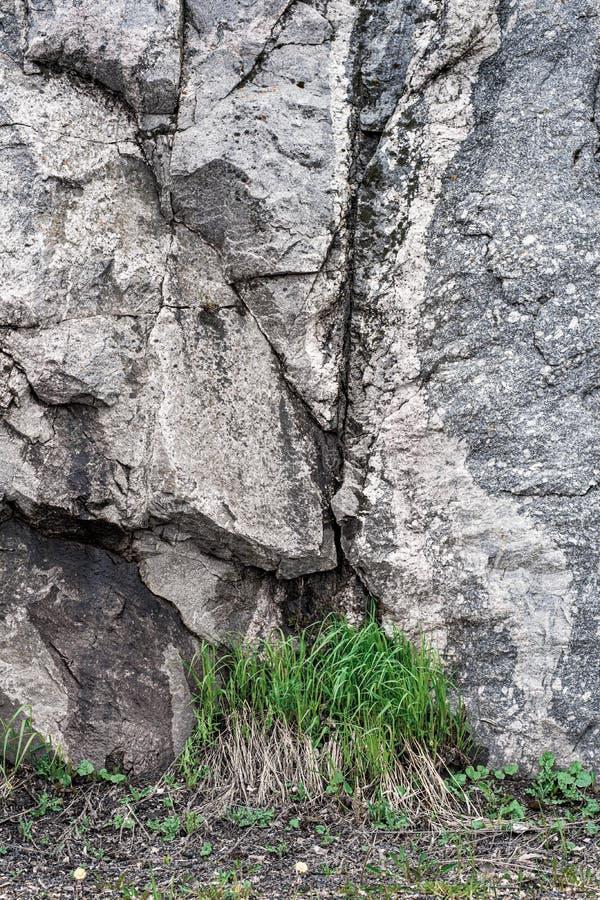 Piedra de la montaña e hierba verde Fondo Textura blur fotos de archivo