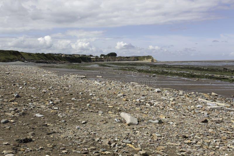 Piedra de los lias del período jurásico en la playa de Doniford, Exmoor, Reino Unido fotografía de archivo libre de regalías