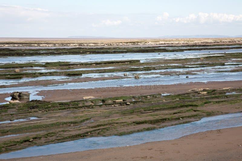 Piedra de los lias del período jurásico en la playa de Doniford, Exmoor, Reino Unido fotos de archivo libres de regalías