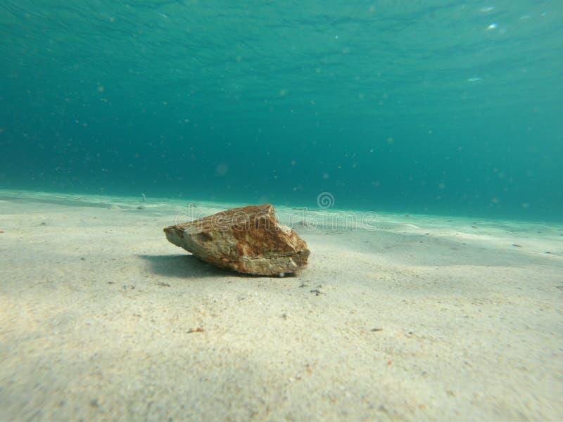 Piedra en el paisaje subacuático de la arena imagen de archivo