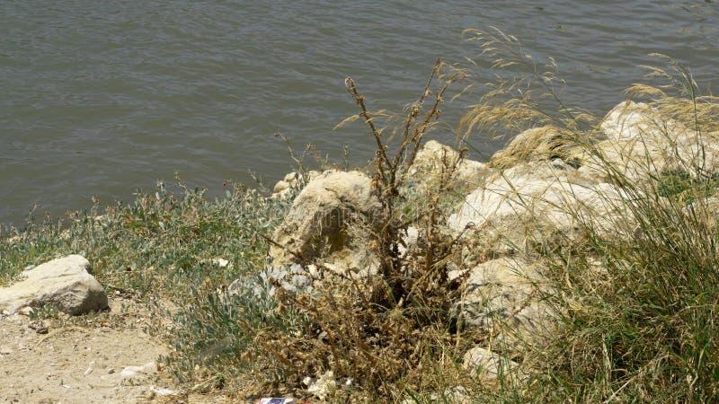 Piedra en el río fotografía de archivo