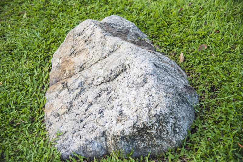 Piedra en hierba verde fresca fotos de archivo libres de regalías