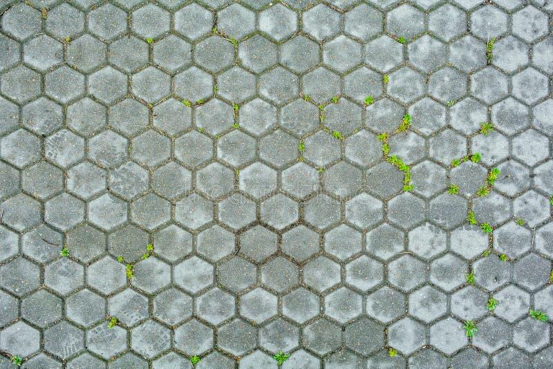Piedra hexagonal del pavimento con la hierba Textura del adoquín hexagonal que pavimenta imágenes de archivo libres de regalías